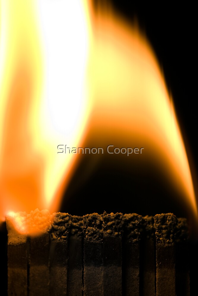 Burn Out by Shannon Beauford