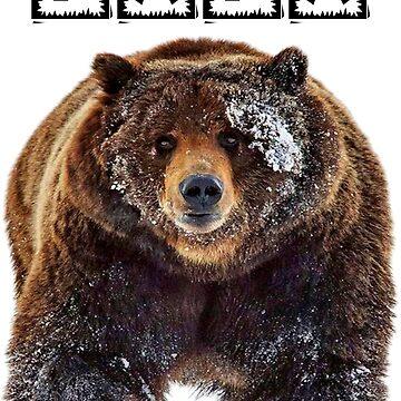 Papa Bear Funny and Novelty Shirt by jimwest001