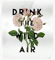 Drink the Wild Air  Poster