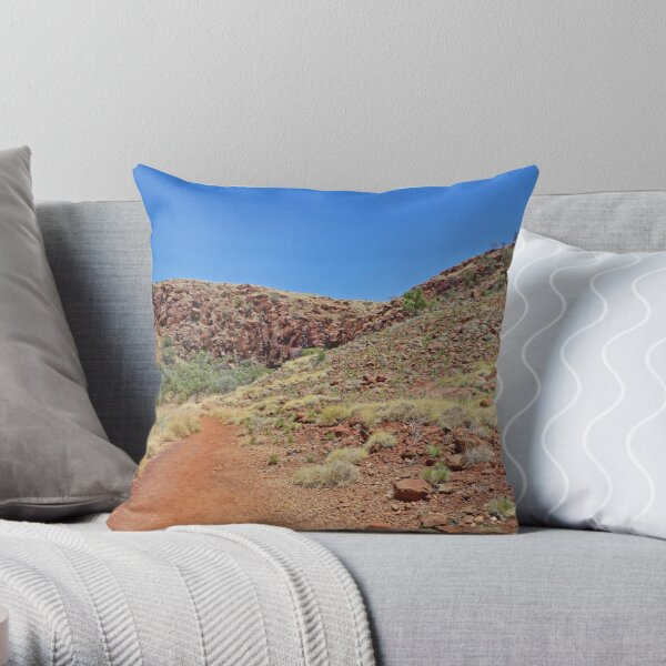 Walk to Python Pool Throw Pillow