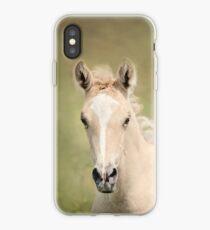 Palomino Colt 6 iPhone Case