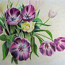 Tulips by Sheila Fielder