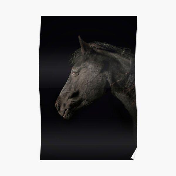Dark Horse 1 Poster