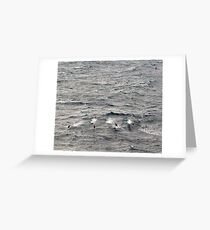Water Sport Greeting Card