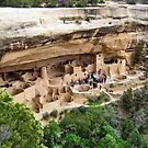 Cliff Palace, Mesa Verde National Park by Laura Puglia
