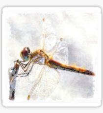 Platinum White Dragonfly Watercolor Sticker