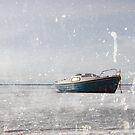 Caught in the ice 2 by Olav Lunde