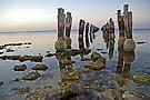 Ye Olde Pier by AlMiller