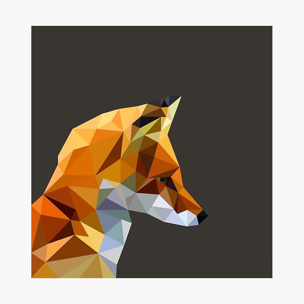 LP Fox Photographic Print