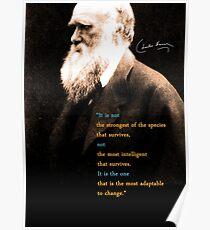 Póster Cita de Charles Darwin 3