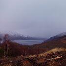 Loch Lomond in winter by stuartm65