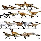 Dromaeosaur Designs by JedTaylor