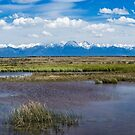 Sawatch Range of the Rocky Mountains  by EthanQuin