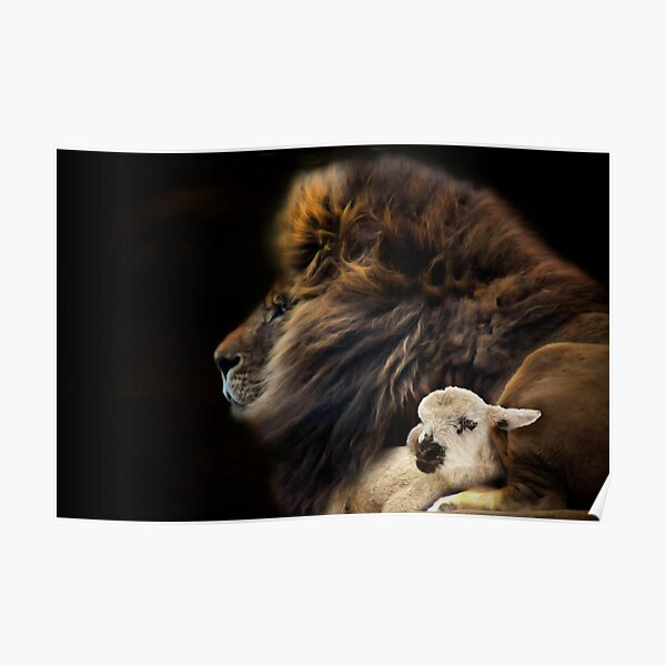and the lion shall lie down with the lamb Poster