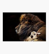 and the lion shall lie down with the lamb Photographic Print