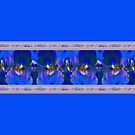 Blue Iris Border by LaRoach