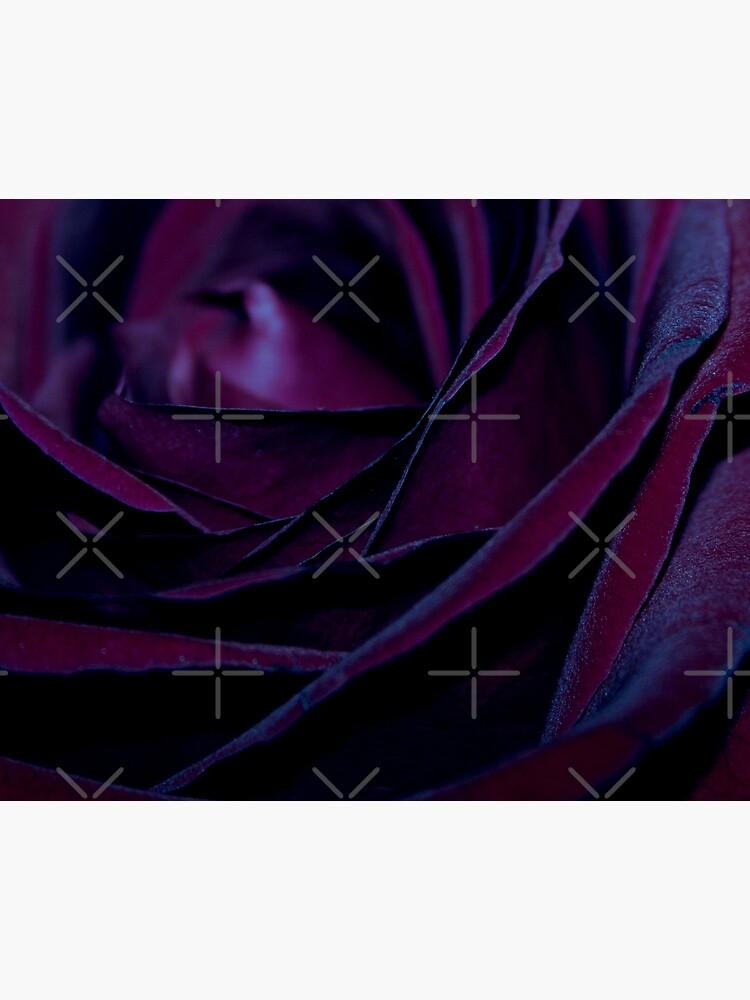 Purple Velvet by Ingz