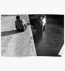 Cooling a horse in the port of Gozo (Malta) Poster