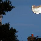 Moon Over Hinderwell    4 by dougie1