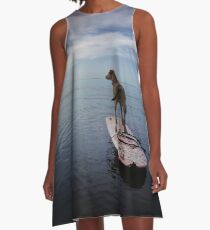 Owning the day A-Line Dress