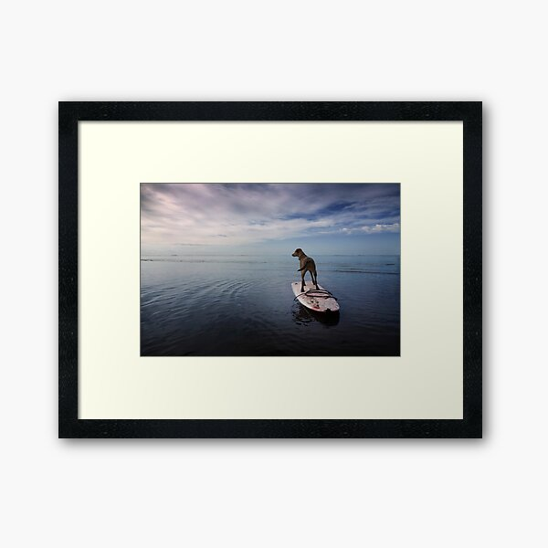 Owning the day Framed Art Print
