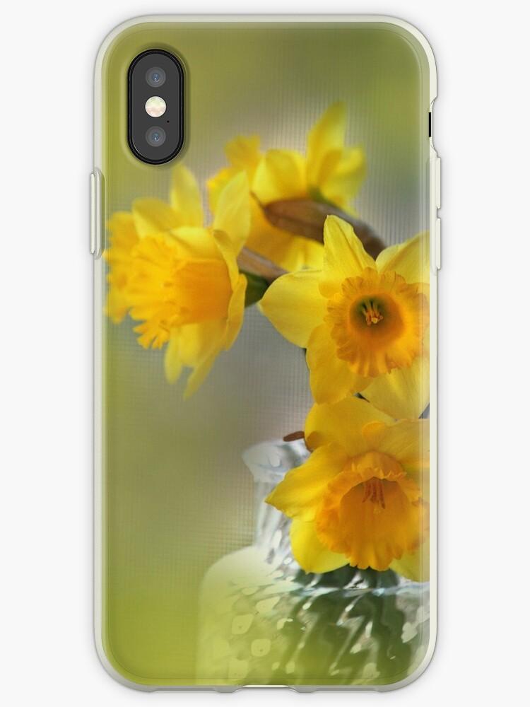 My First Daffodils by Eileen McVey