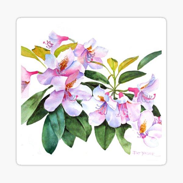 Spring Rhody Watercolor Sticker