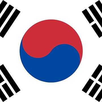 South Korea Flag by stoopiditees