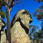 A Granite Face by Penny Smith