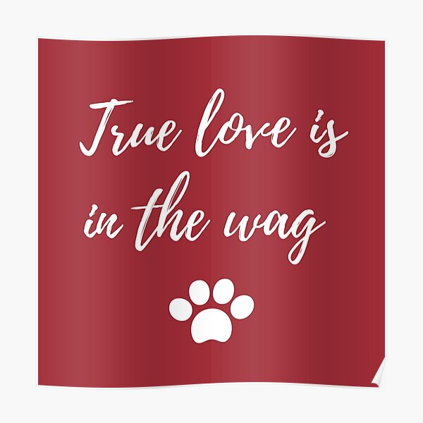 True love is in the wag Poster