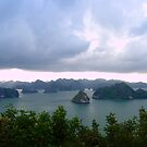 Halong Bay Vietnam - Panoramic by chriso