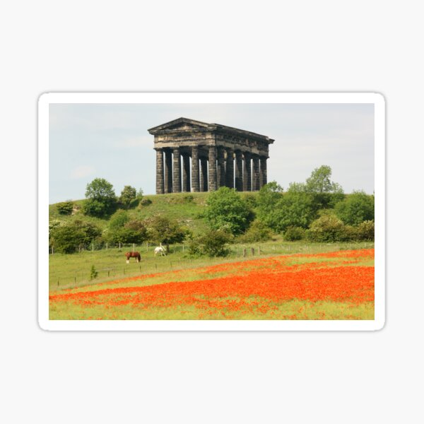 Poppies at Penshaw Monument, County Durham Sticker