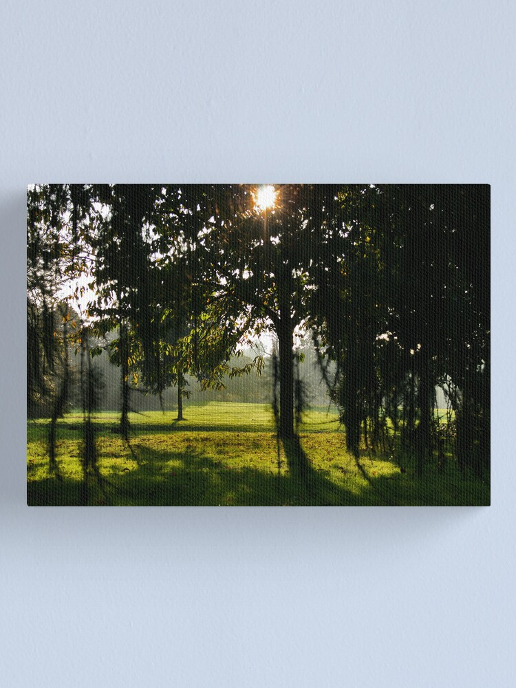 Alternate view of Sunlight and Shade Canvas Print