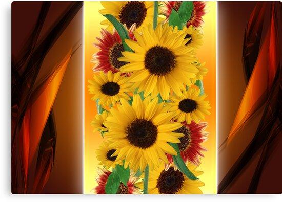 flowers by ariaznet