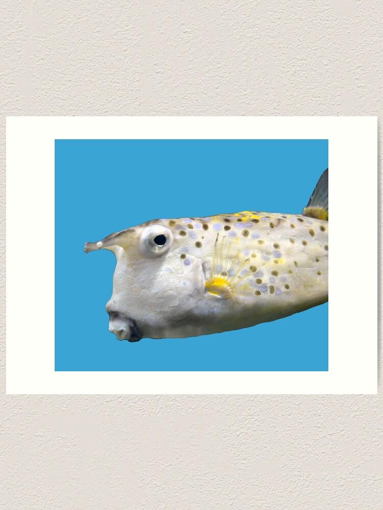 Alternate view of Cowfish Art Print