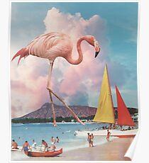 Póster Flamingo Playground