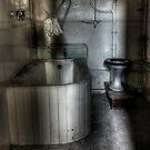 Toilet! by Richard Shepherd