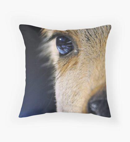 deep blue eyes Throw Pillow
