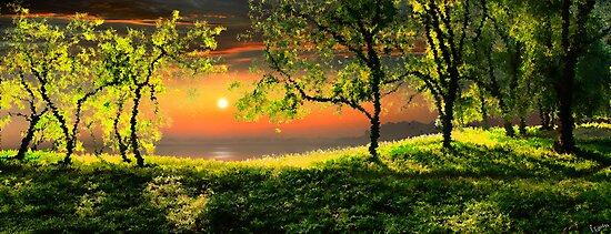 Sunset Calmness by Igor Zenin
