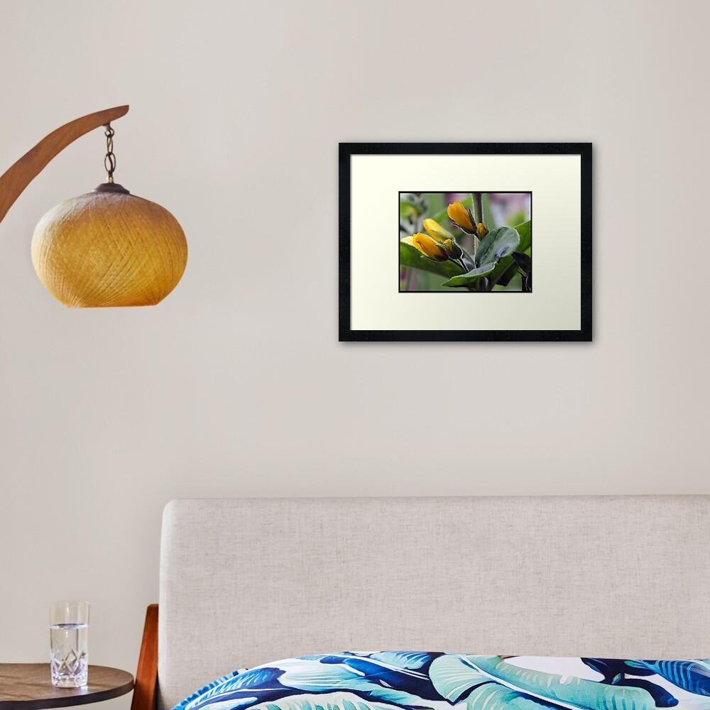 mellowyellow Framed Art Print
