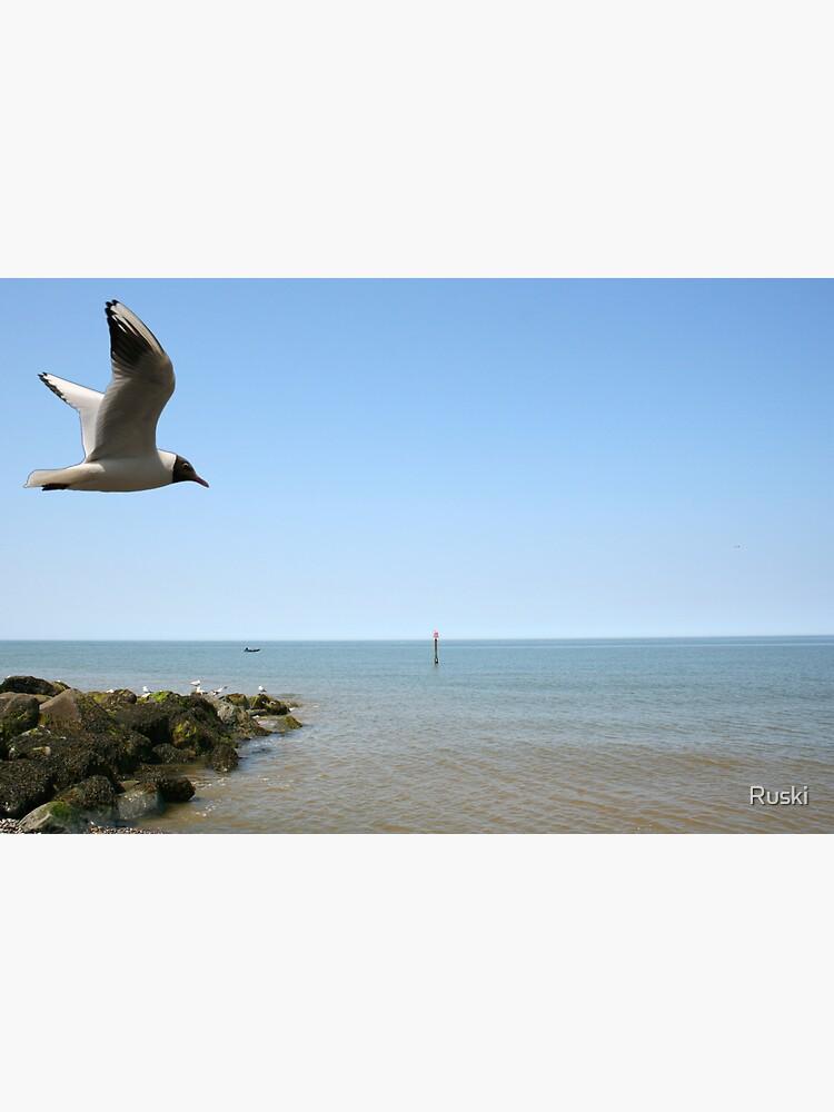 Sheringham Seagull by Ruski