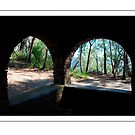 Through the Arched Windows by Catherine Davis