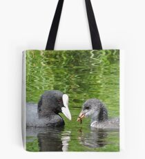 Coot and Cootling Tote Bag