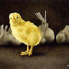 Will Bullas / art print / little stinkers... / humor / animals by Will Bullas