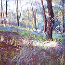 Ironbark Country by Lynda Robinson
