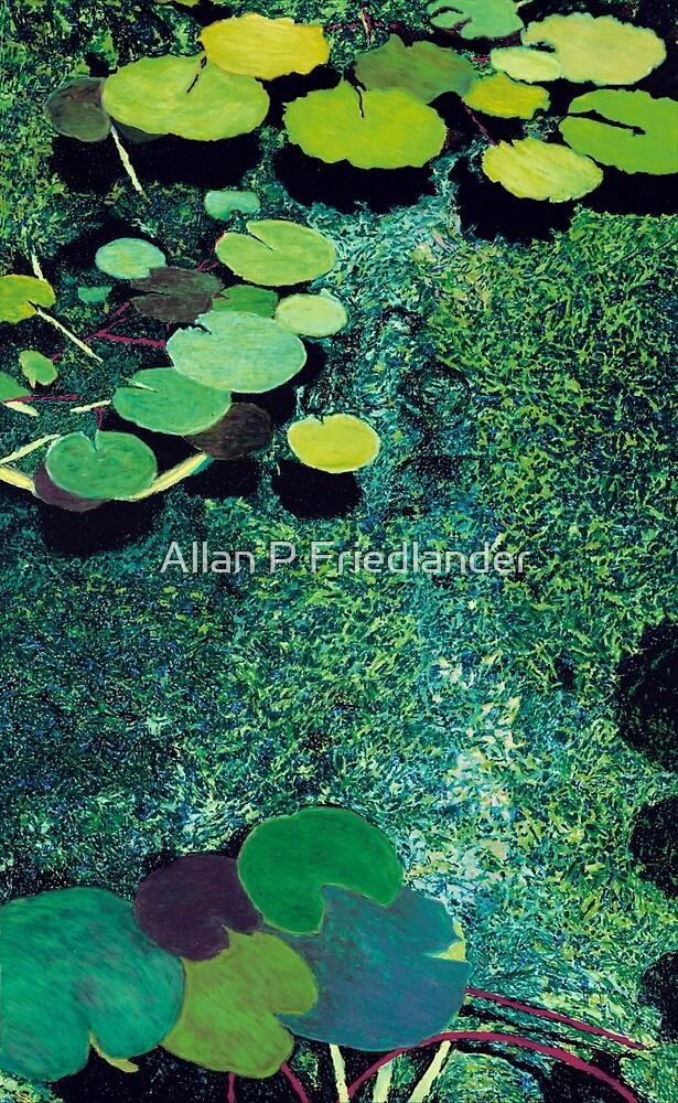 Green Shimmering Pond by Allan P Friedlander