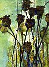 Poppy Seed Heads by Val Spayne