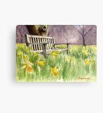 Bench in daffodils  Metal Print