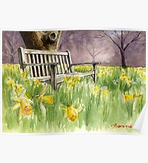 Bench in daffodils  Poster