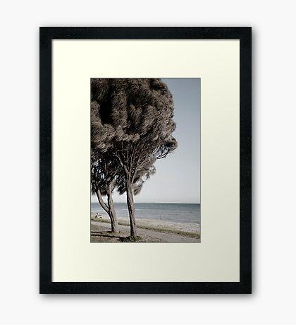 White Cliffs Framed Print